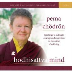 Bodhisattva Mind