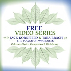 Free Video Series with Jack Kornfield and Tara Brach on The Power of Awareness