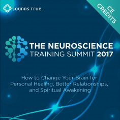 The Neuroscience Training Summit 2017 CE Credits