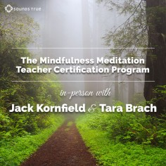 Mindfulness Meditation Teacher Certification