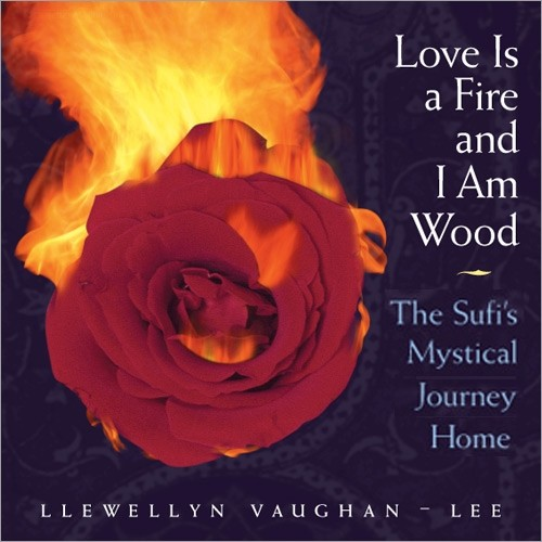 Love Is a Fire and I Am Wood