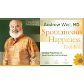 Spontaneous Happiness Tool Kit